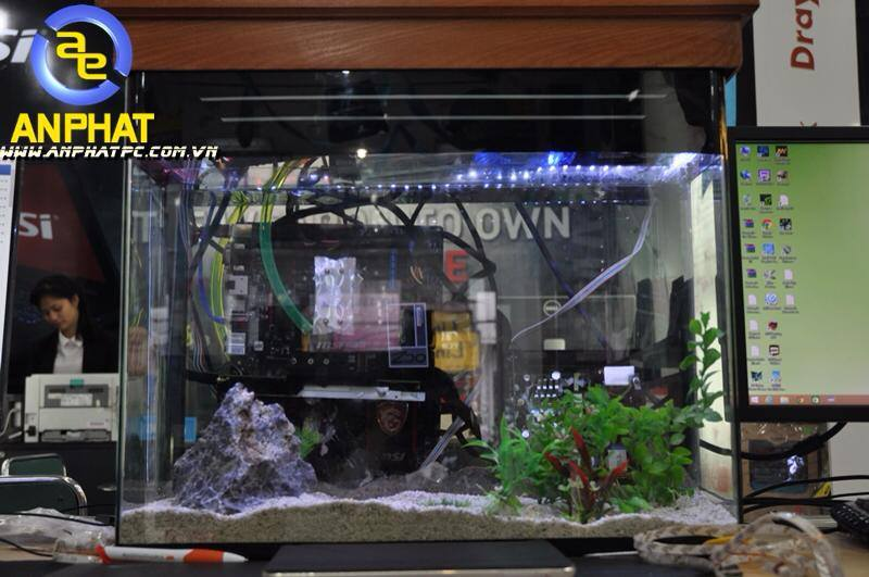 dtien87_pc_aquarium_gaming_be_ca_may_tinh_choi_game_an_phat_pc_10_11_2014_1