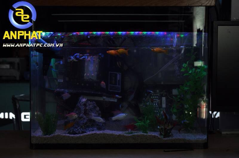 dtien87_pc_aquarium_gaming_be_ca_may_tinh_choi_game_an_phat_pc_10_11_2014_10