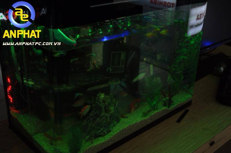dtien87_pc_aquarium_gaming_be_ca_may_tinh_choi_game_an_phat_pc_10_11_2014_6