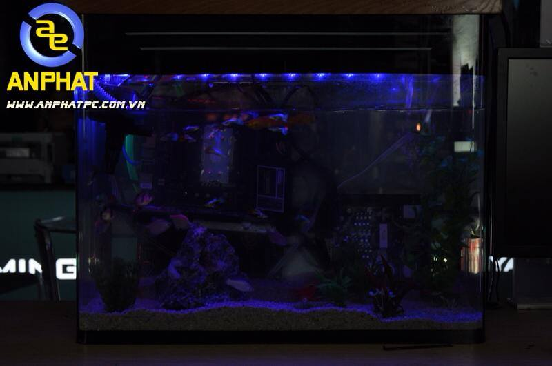 dtien87_pc_aquarium_gaming_be_ca_may_tinh_choi_game_an_phat_pc_10_11_2014_7