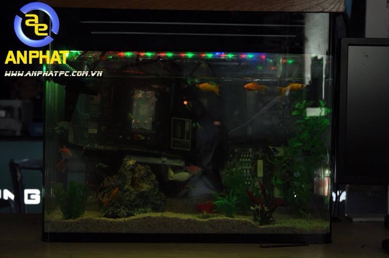 dtien87_pc_aquarium_gaming_be_ca_may_tinh_choi_game_an_phat_pc_10_11_2014_8